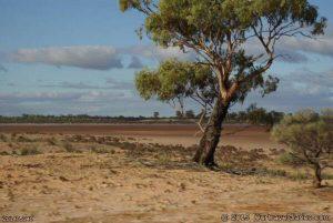 Lake Giles, Western Australia