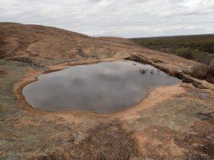 Gnamma hole on McDermid Rock