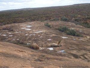 Pools of water on McDermid Rock
