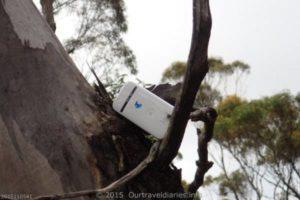 Got phone reception at Overshot Hill near Ravensthorpe