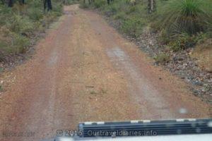 Wet, but easy track near Mount Dale, Darling Range, WA