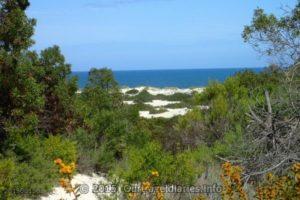 Kanidal Beach, Southern Ocean