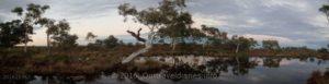 Storm coming, Peter Creek, Pilbara, WA