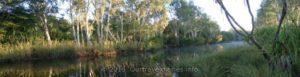 Calder River, Munja Track, Kimberley, WA